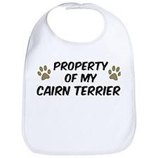 Cairn Terrier: Property of Bib