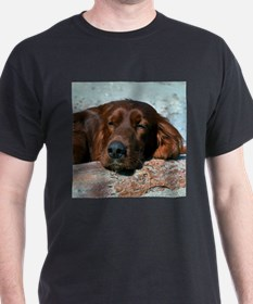 Irish Setter Sleeping T-Shirt