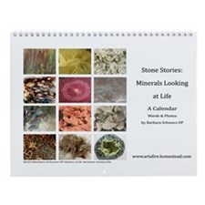 Stone Stories Minerals looking at life Wall