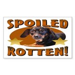 Spoiled Rotten Dachshund Rectangle Sticker