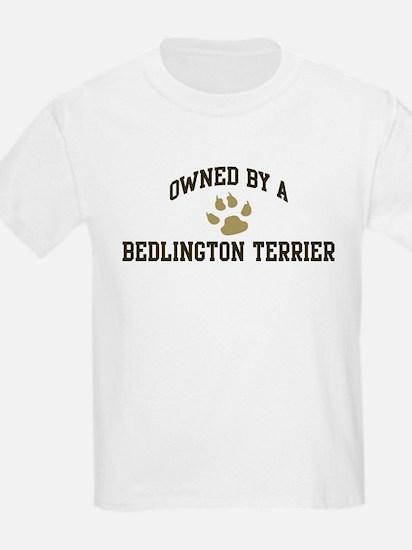Bedlington Terrier: Owned Kids T-Shirt