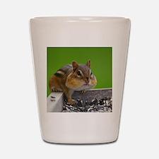 chipmunk Shot Glass
