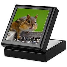 chipmunk Keepsake Box