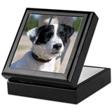 Jacks russell terrier Square Keepsake Boxes