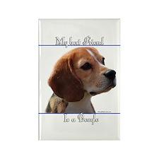 Beagle Best Friend2 Rectangle Magnet