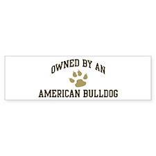 American Bulldog: Owned Bumper Bumper Sticker