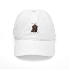 Bloodhound Best Friend2 Baseball Cap