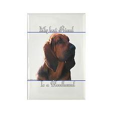 Bloodhound Best Friend2 Rectangle Magnet