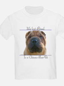 Shar-Pei Best Friend2 Kids T-Shirt