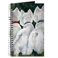 three Amigos Journal