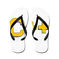 C++ Program Language Flip Flops