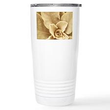Boulder Mullein Travel Mug