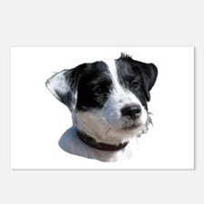 """Jackrussell 2"" Postcards (Package of 8)"