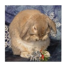 Tile Coaster with Grooming Rabbit