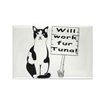 Hungry Feline Rectangle Magnet (100 pack)