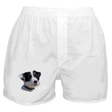 """""""Jackrussell 2"""" Boxer Shorts"""
