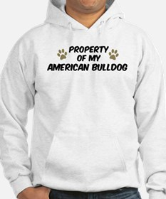 American Bulldog: Property of Jumper Hoody