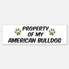 American Bulldog: Property of Bumper Bumper Bumper Sticker