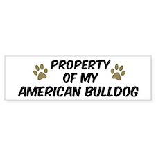 American Bulldog: Property of Bumper Bumper Sticker