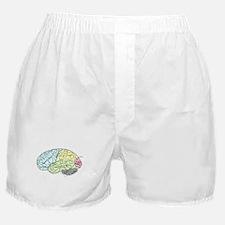 dr brain lrg Boxer Shorts