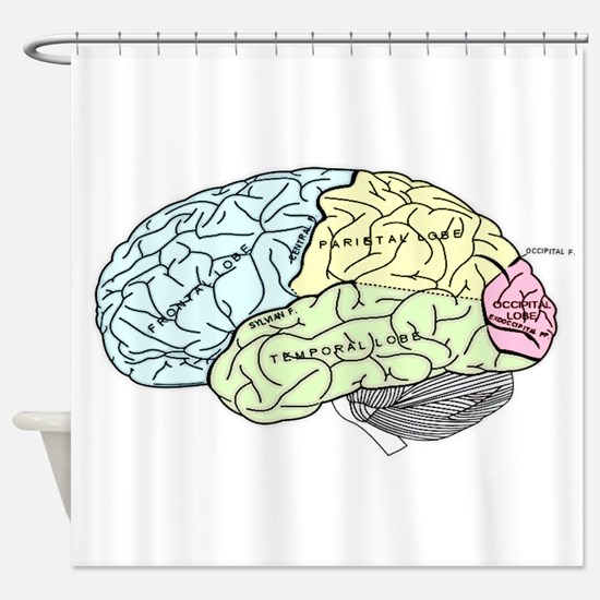 dr brain lrg Shower Curtain