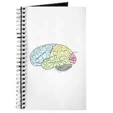 dr brain lrg Journal