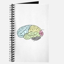 dr brain lrg Journal