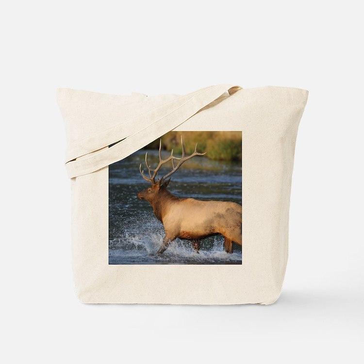 elk splashing in the water Tote Bag