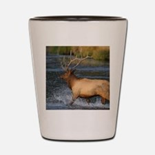 elk splashing in the water Shot Glass