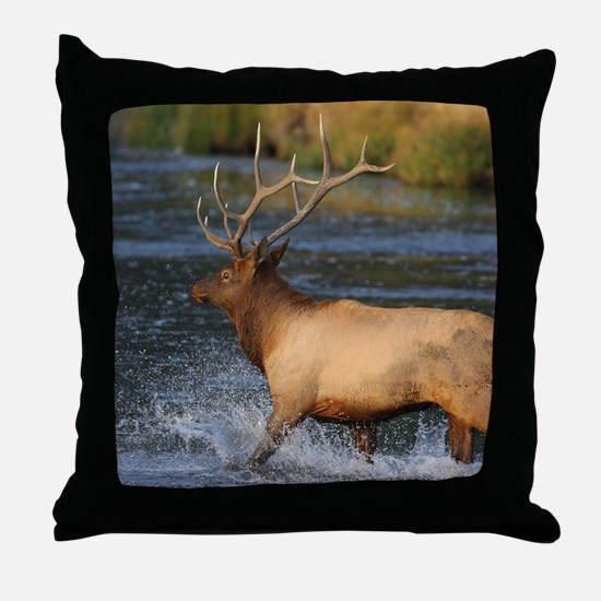 elk splashing in the water Throw Pillow