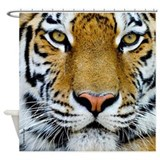 Tiger Shower Curtains