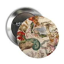 "Cetus, Aquarius, Andromeda, Pegasus, Phoenix 2.25"""