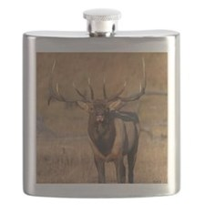 Look at Me! Flask