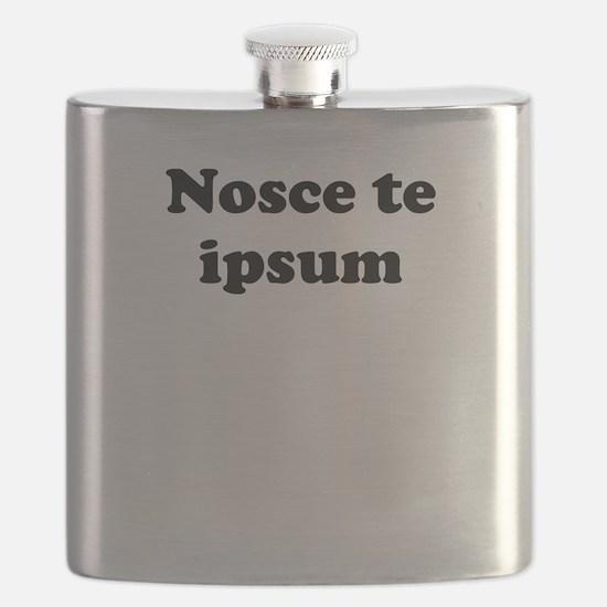 Nosce te ipsum Flask