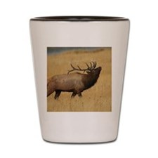Bull Elk with Head Back Shot Glass