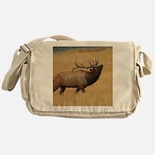 Bull Elk with Head Back Messenger Bag