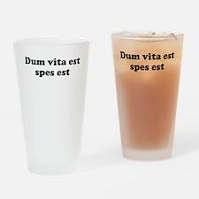 Dum vita est spes est Drinking Glass