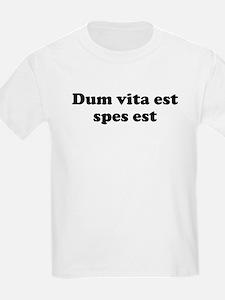 Dum vita est spes est T-Shirt