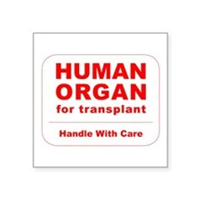 "Human Organ for Transplant Square Sticker 3"" x 3"""