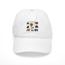 Endangered Animals of Sumatra Baseball Cap