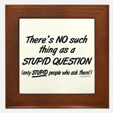 No Stupid Questions Framed Tile