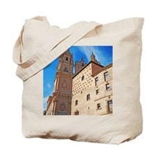 University and House of Shells Tote Bag