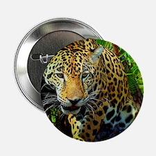 """Jaguar 2.25"""" Button"""
