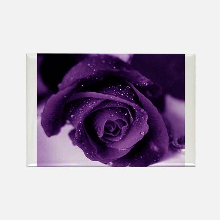 Purple Rose Rectangle Magnet