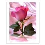 Pink Rose Small Poster