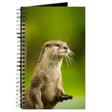 Short Clawed Asian Otter Journal