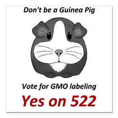 Yes on 522 Vote for GMO labeling Square Car Magnet