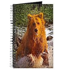 Bear Creek Journal