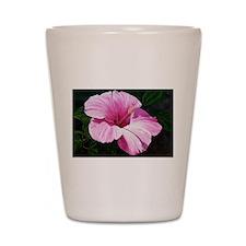 Pink Hibiscus Shot Glass
