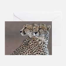 Two Headed Cheetah Greeting Cards